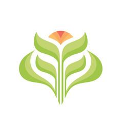 logo template concept flower vector image