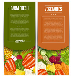 organic vegetable farming flyers set vector image vector image