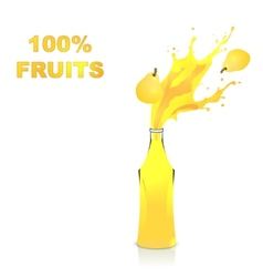 Fruits juices collection pear vector image