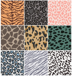 animal skin seamless pattern vector image