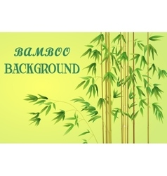 Bamboo stem with green leaves vector