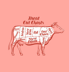 cow beef meat cuts scheme or diagrams for vector image vector image