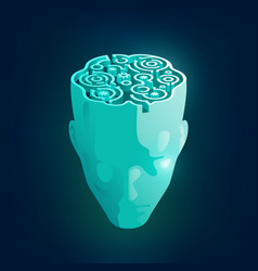 maze head vector image