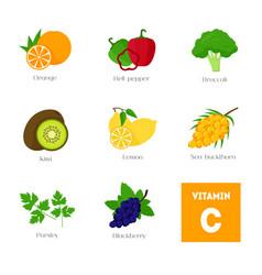 cartoon food with vitamin c elements vector image