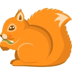 Cartoon Squirel Isolated vector image