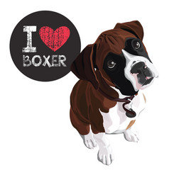 I love boxer vector