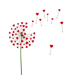 Romantic valentines background dandelions with vector