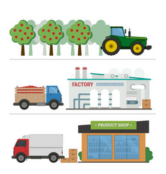 stages of production and processing of juice vector image vector image