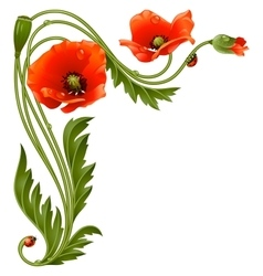 Corner pattern with red poppies and ladybug vector