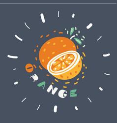 fruit orange vector image