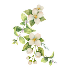 Watercolor wreath jasmine and mint isolated vector