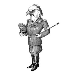White-headed eagle man in military uniform hand vector