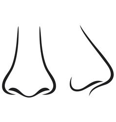 nose vector image vector image