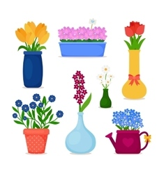 Spring flowers in pots and vase set vector image
