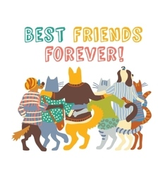 Cats and dogs pets group friends hugs isolate vector image