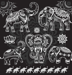 Set of decorated elephants on black vector image