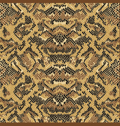 abstract python snake skin wallpaper vector image vector image