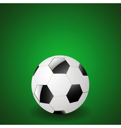 Ball on a green background vector