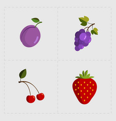 Colorful fruit icon set on white background vector