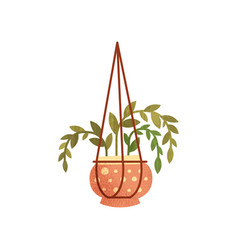 House plant in hanging ceramic flower pot element vector