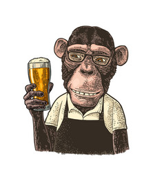 monkey dressed apron hold beer glass vintage vector image