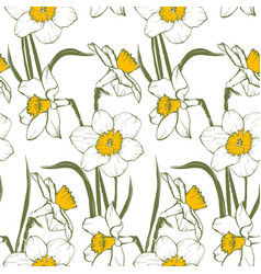 narsisus bouquet seamles pattern vector image