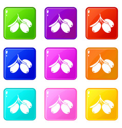 Sea buckthorn branch icons 9 set vector
