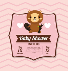 baby shower card invitation beauty beaver vector image vector image