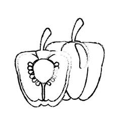 half pepper food diet healthy sketch vector image
