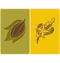 cocoa bean and vanilla pods vector image vector image
