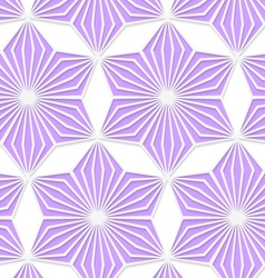 3D colored purple geometrical star vector image