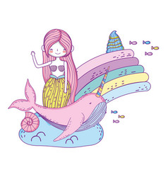 Beautiful mermaid with narval fairytale character vector