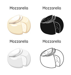 Design cheese and mozzarella icon web vector