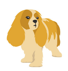 dog in flat style vector image