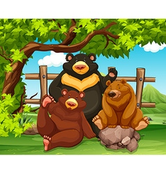 Grizzly bears sitting in the park vector