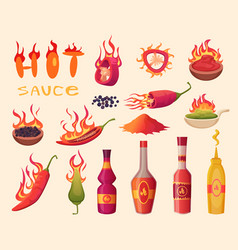 hot sauce cartoon ingredients for delicious food vector image