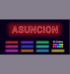 Neon name of asuncion city vector