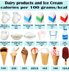 set of different dairy product vector image