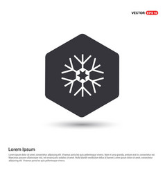 Snow flake icon hexa white background icon vector