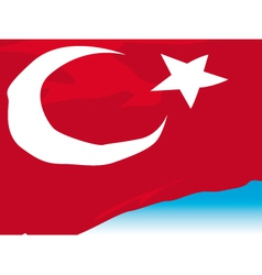 Turkish Flag vector image vector image