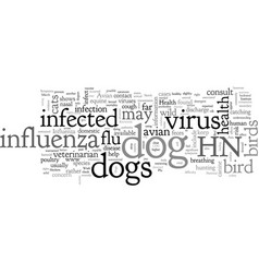 Are dogs safe from bird flu vector