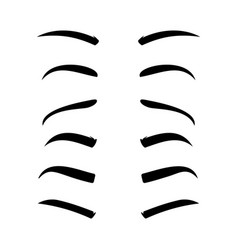 Eyebrows pencil man shape female eye brow vector