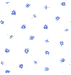 Forget me not pattern vector