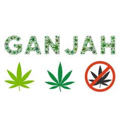 Ganjah label mosaic weed leaves vector