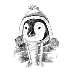 hand drawn dressed up penguin in hipster style vector image