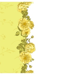 Seamless Border of blossom roses vector image