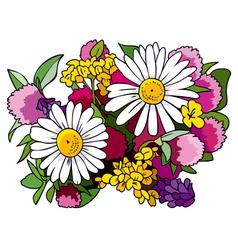 Bouquet of wild flowers vector image vector image