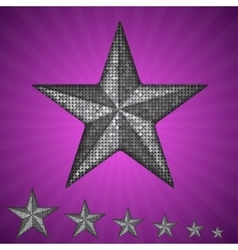 silver star with elements of sequins vector image vector image