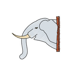 animal trophy vector image