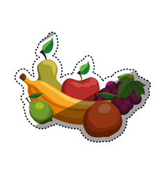 delicious and healthy food vector image